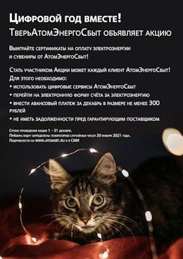 АтомЭнергоСбыт-акция