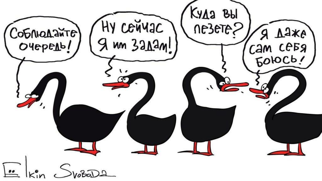 Стая «черных лебедей». Россия попала в стечение неблагоприятных обстоятельств