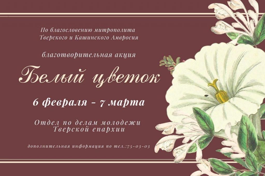 В Твери проходит акция «Белый цветок» по сбору средств для гостиницы для бездомных