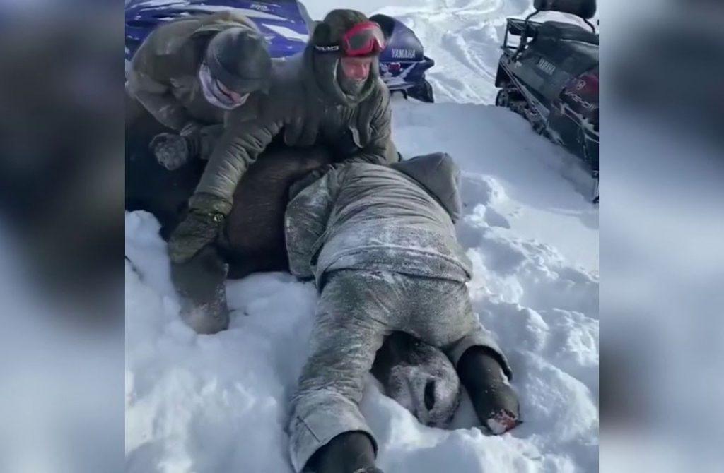 В Тверской области задержали браконьеров, жестоко убивших лосиху