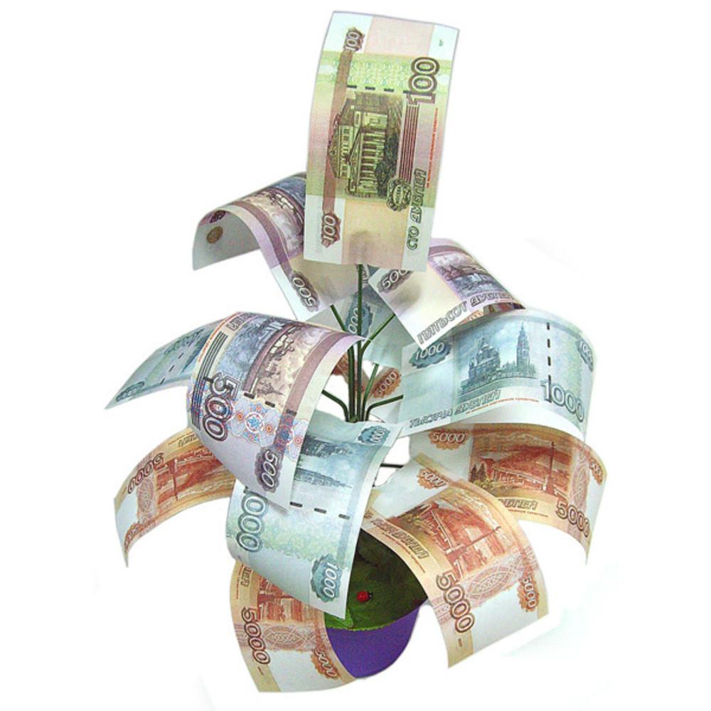 Средняя зарплата в Тверской области выросла до 37 000 рублей